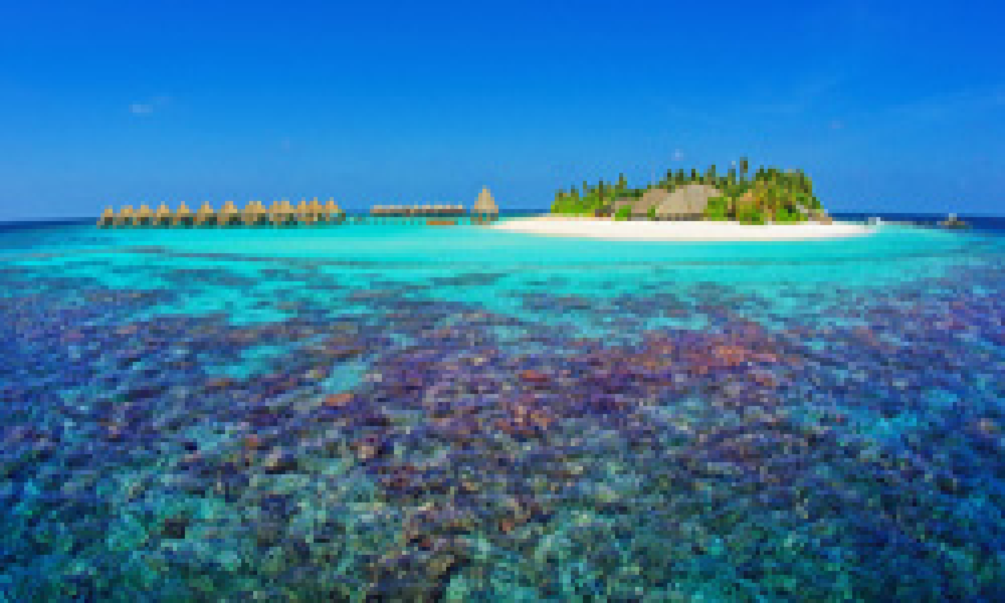 Vacanza maldive mirihi island resort viaggi pi for Isole da sogno a sud della birmania codycross